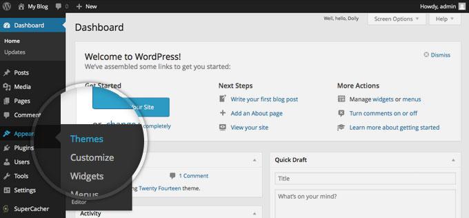 customizing thesis theme wordpress